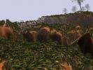 cudaGigaVoxels_Forest_03